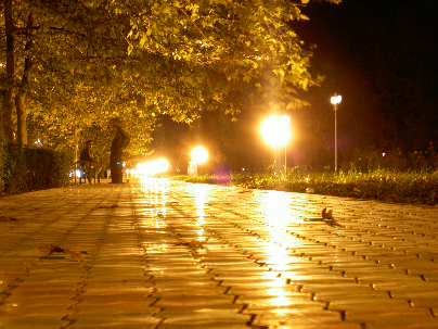 Аллея горпарка